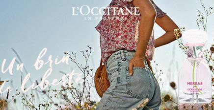 L'été chez l'Occitane !